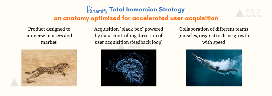 Pahamify's Total Immersion Strategy